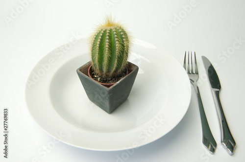 Cactus for dinner