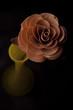 Drewniana róża