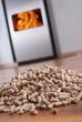 canvas print picture - wohnzimmer mit dänischem ofen und pellets