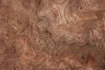 wood texture-walnut