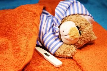 Teddy hat Grippe