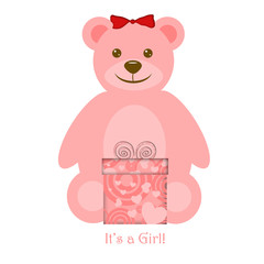 Pink Girl Teddy Bear with Gift