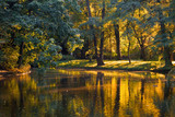 Fototapety Golden reflections in the water of a pond on a calm day