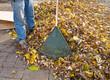 Garden Rake and heap of leaves