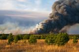 forestfires