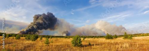 forestfire - 27789068