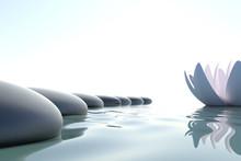 Zen flower loto près de la pierre