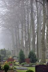 Personen spazieren im Morgennebel auf dem herbstlichen Friedhof