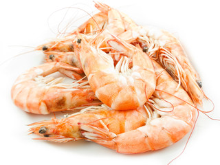 Shrimps with shells on white background