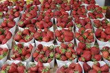 Strawberries on market stall. Nice. Provence. France