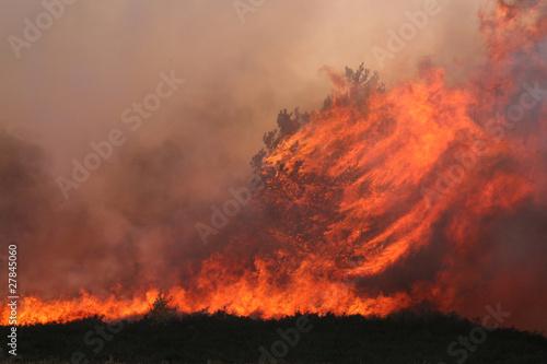 Frensham Heath Fire