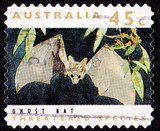 Australian Post Stamp Ghost Bat, Macroderma gigas, False Vampire poster