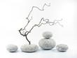 Runde Steine, Zweige
