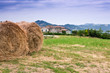 Landwirtschaft mit Bauernhaus in den Marken, Italien