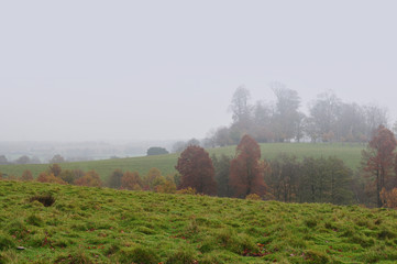Countryside fog