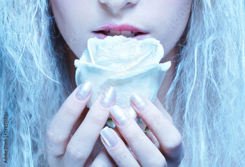 frozen fairy with rose - 27851885