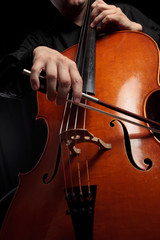 Cello y arco en acción