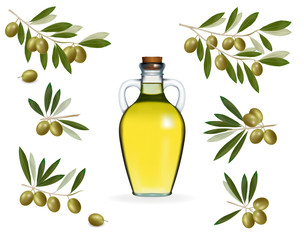 Big set with green olives with bottle of olive oil. Vector.