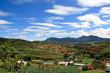 Vietnam Farmland Landscape