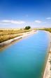 paisaje con canal de agua de regadio y arbol - 27868812