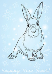 a rabbit against blue background with snowflakes