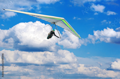 Free flight - 27880816