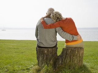 Rear view of a senior couple sitting on a tree stump, arms around each other