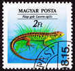 Hungarian Postage Stamp Brown Green Sand Lizard, Lacerta Agilis