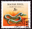 Hungarian Postage Stamp Grass Snake Natrix Natrix Ringed, Water