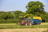 Tractor loading silage into truck in farm field
