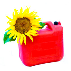 Bio-fuel concept