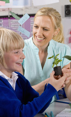 Teacher and school boy looking at plant seedling in classroom