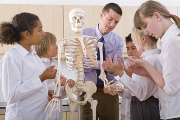 School children listening to biology teacher explain human skeleton
