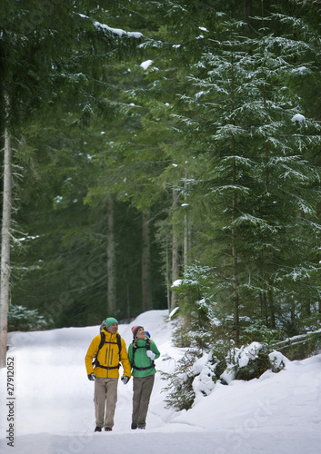Couple holding hands and backpacking in snowy woods