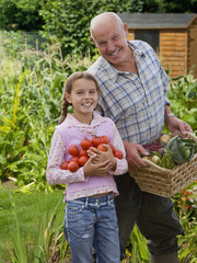 Grandfather and granddaughter gathering vegetables in garden