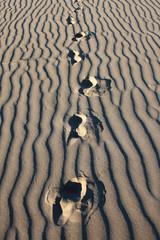 passi nella sabbia