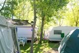 Fototapety Camping tents caravan in green trees outdoor