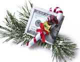 The financial gift, hundred dollars on fur-tree branches