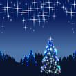 Weihnachten, Tannenbaum, Sternenhimmel, Weihnachtskarte, hoch