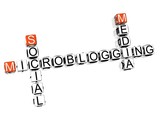Microblogging Social Media Crossword