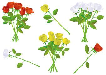 Colorful rose bouquet vector illustration set.
