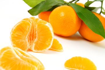 clementinen #4