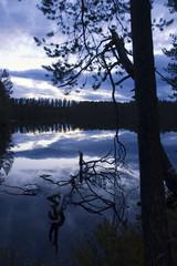 Twilight reflected