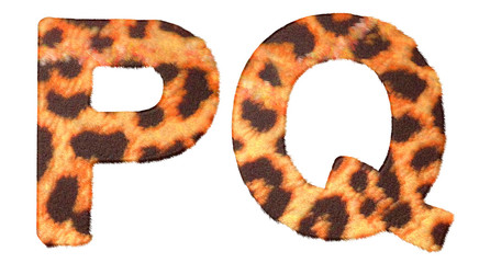 Leopard fur P and Q letters isolated