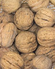 Many walnuts closeup