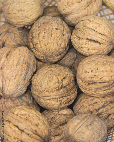 Many walnuts closeup