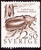 Sweden Stamp Hermit Beetle Osmoderma Eremita Läderbaggen Tree poster