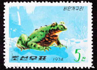 North Korean Postage Stamp Oriental Black Firebelly Toad
