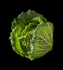 Savoy cabbage head isolated on black background