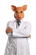 Swine Flu metaphor